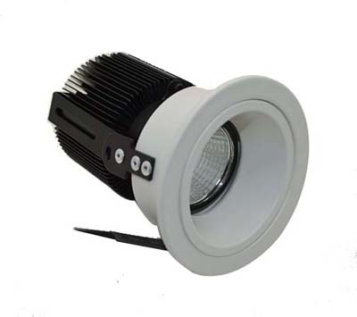COB LED Down Light 10W-YLF01